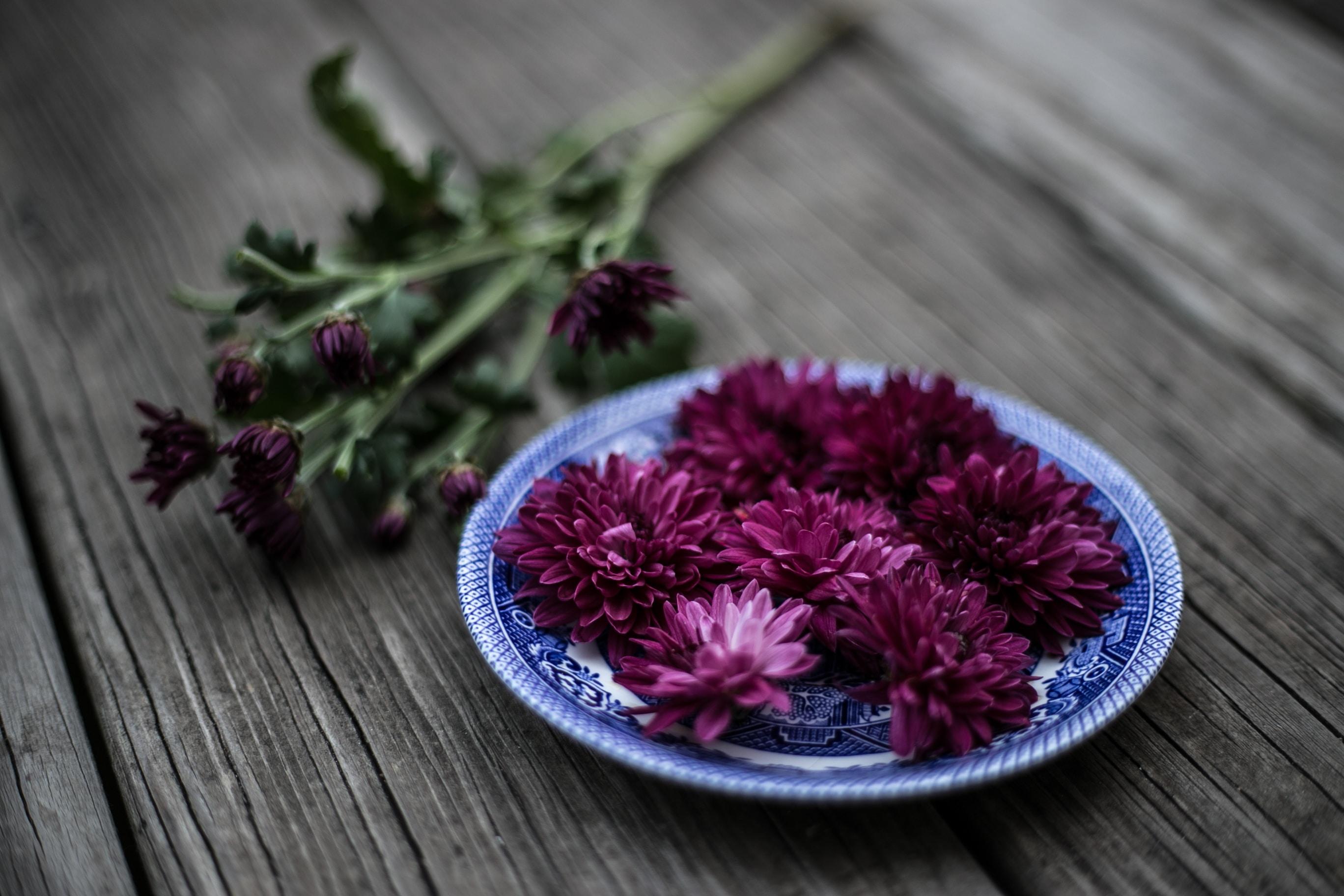 purple flowers on blue plate
