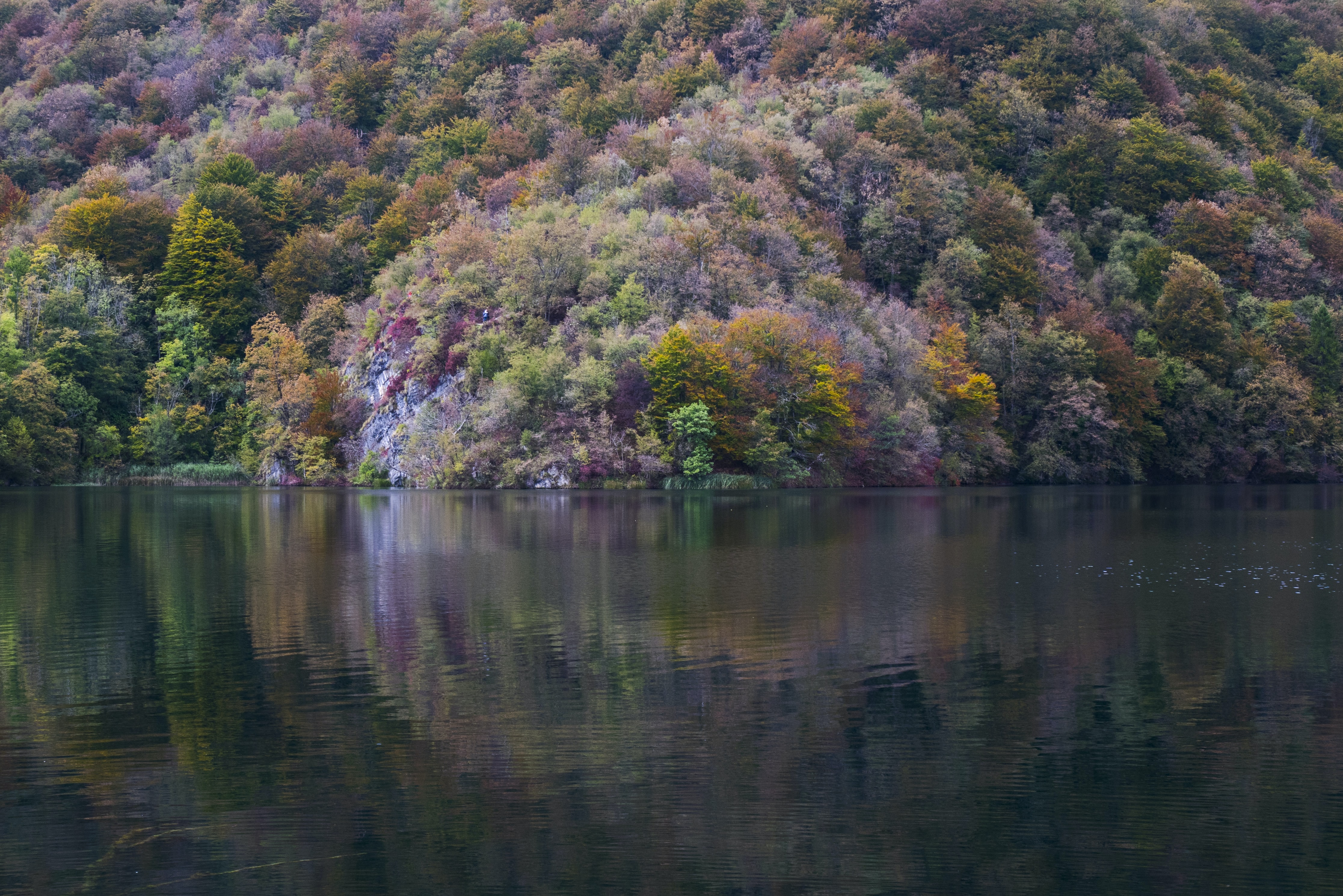 Colorful bushes and trees on the shore of a quiet lake in Plitvice Lakes National Park