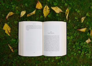 opened book on grass during daytime