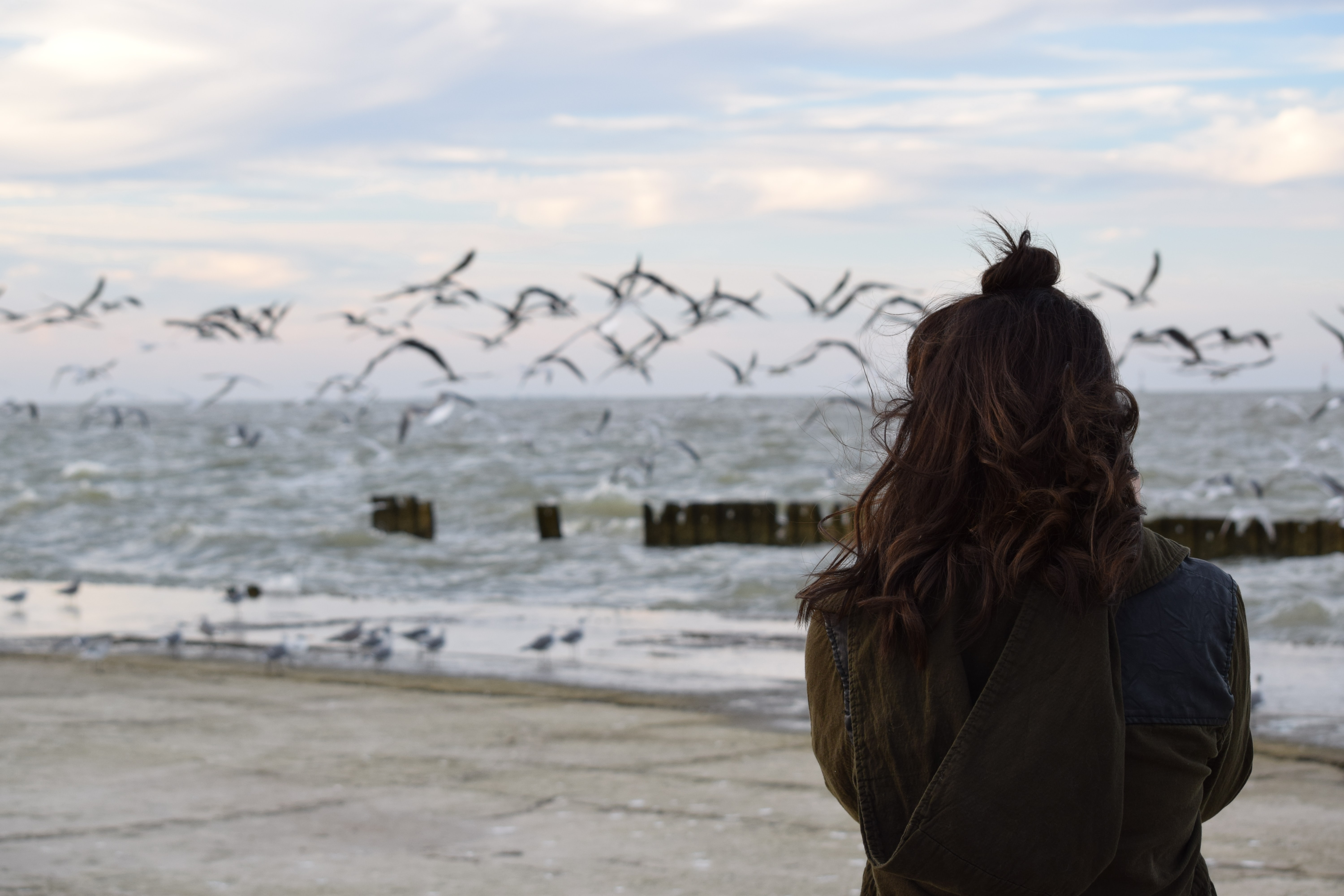 woman looking at flock of birds flying over body of water under cloudy sky