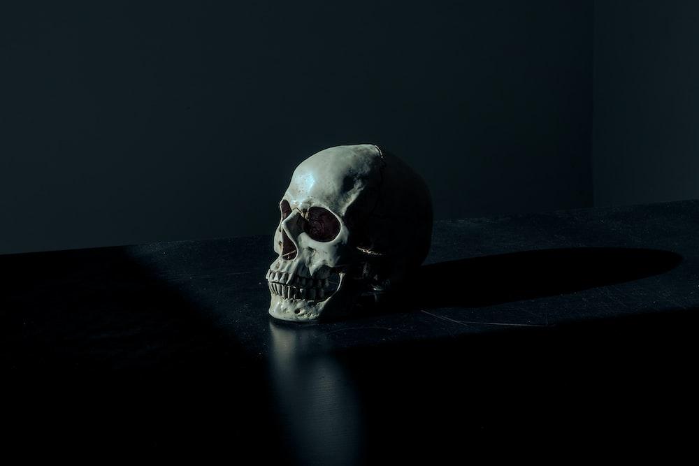 white and black skull figurine on black surface