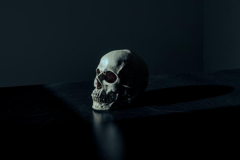 white and black skull figurine on black surface