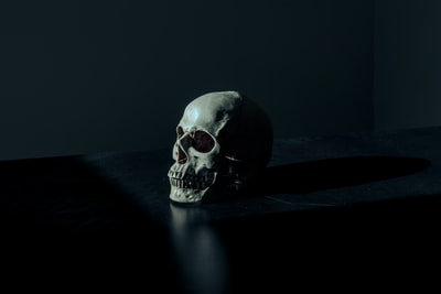 white and black skull figurine on black surface dark teams background