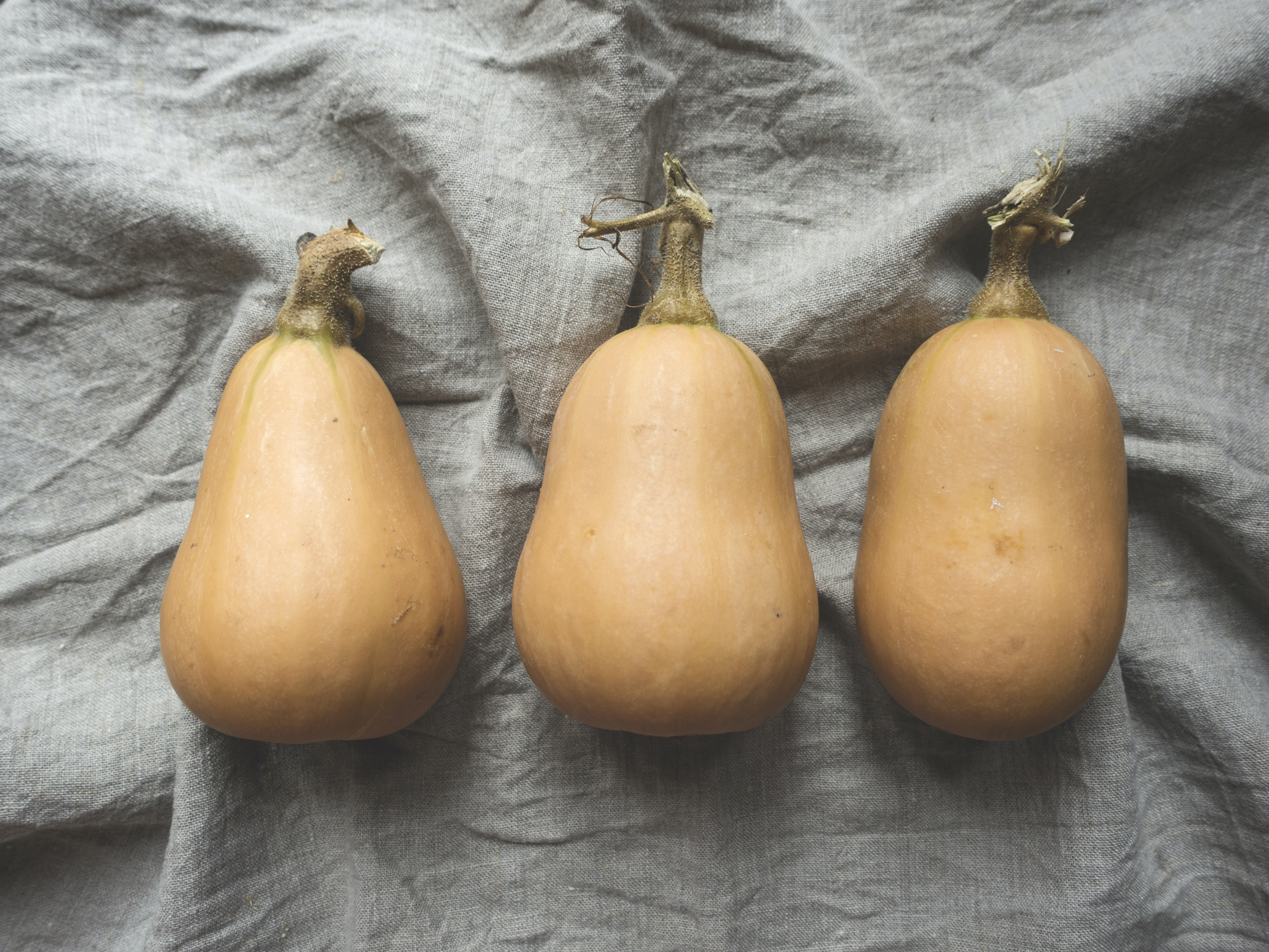 Three butternut squash on a gray linen