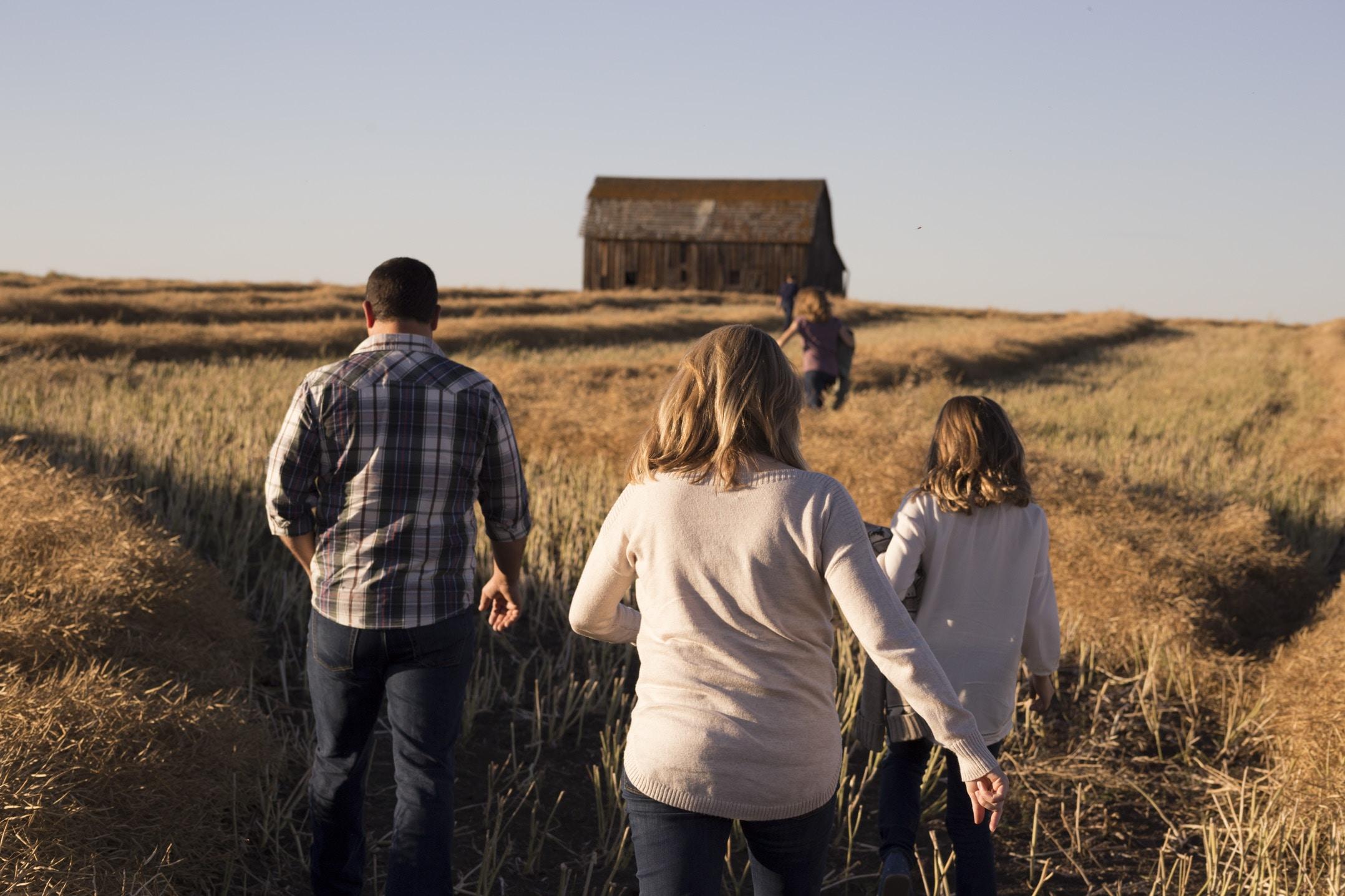 A family walking through a golden field towards a barn