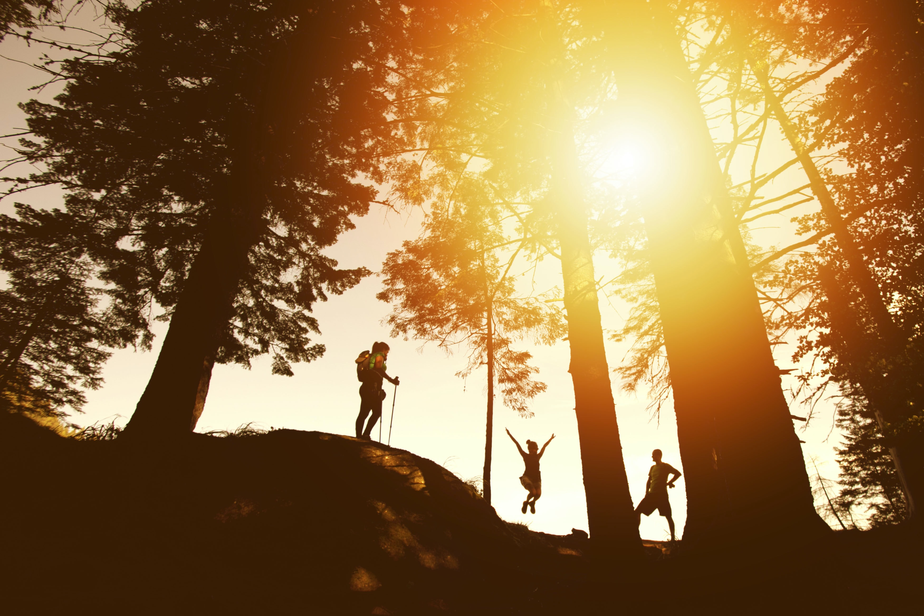 The sun flares between tree trunks and over three hikers on a hill, two standing, one jumping with arms raised