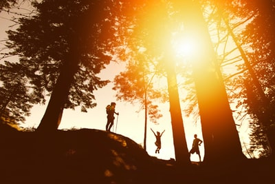 silhouette photo of three person near tall trees hiking teams background
