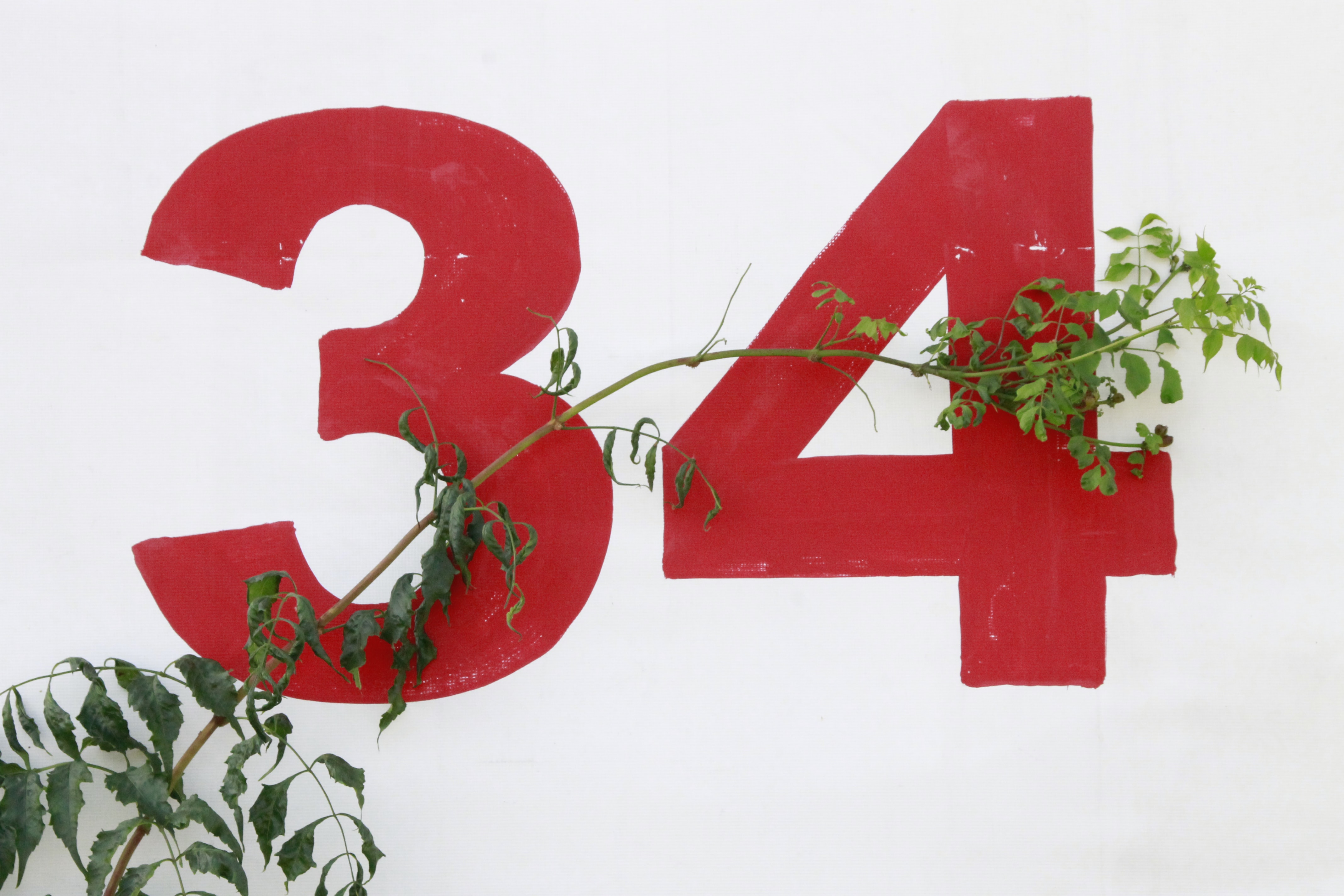 number 34 wall print