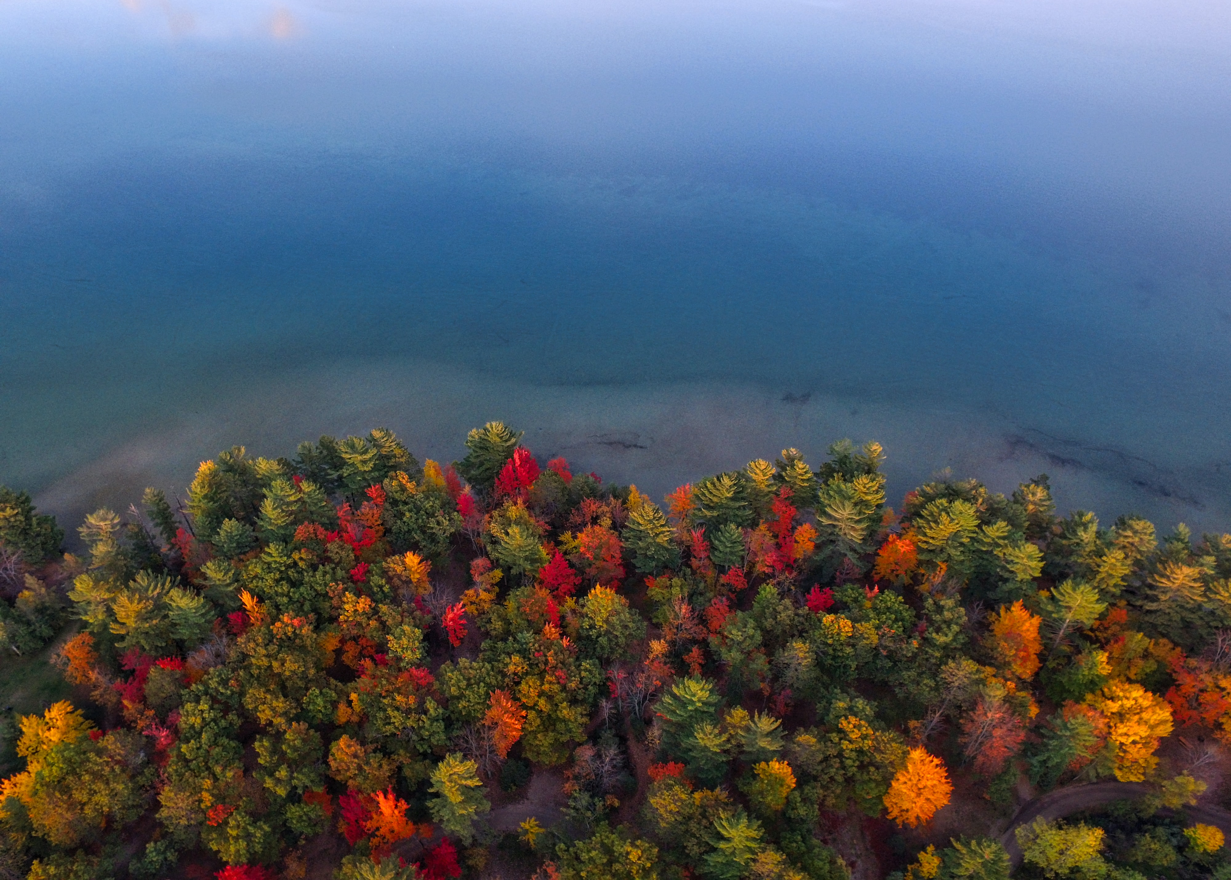 Autumn-colored trees on the shore of a lake in Grayling, Michigan