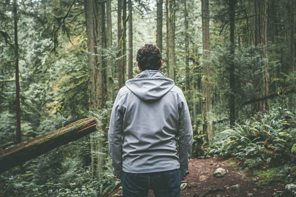 man in gray hooded jacket standing on dirt road between trees during daytime