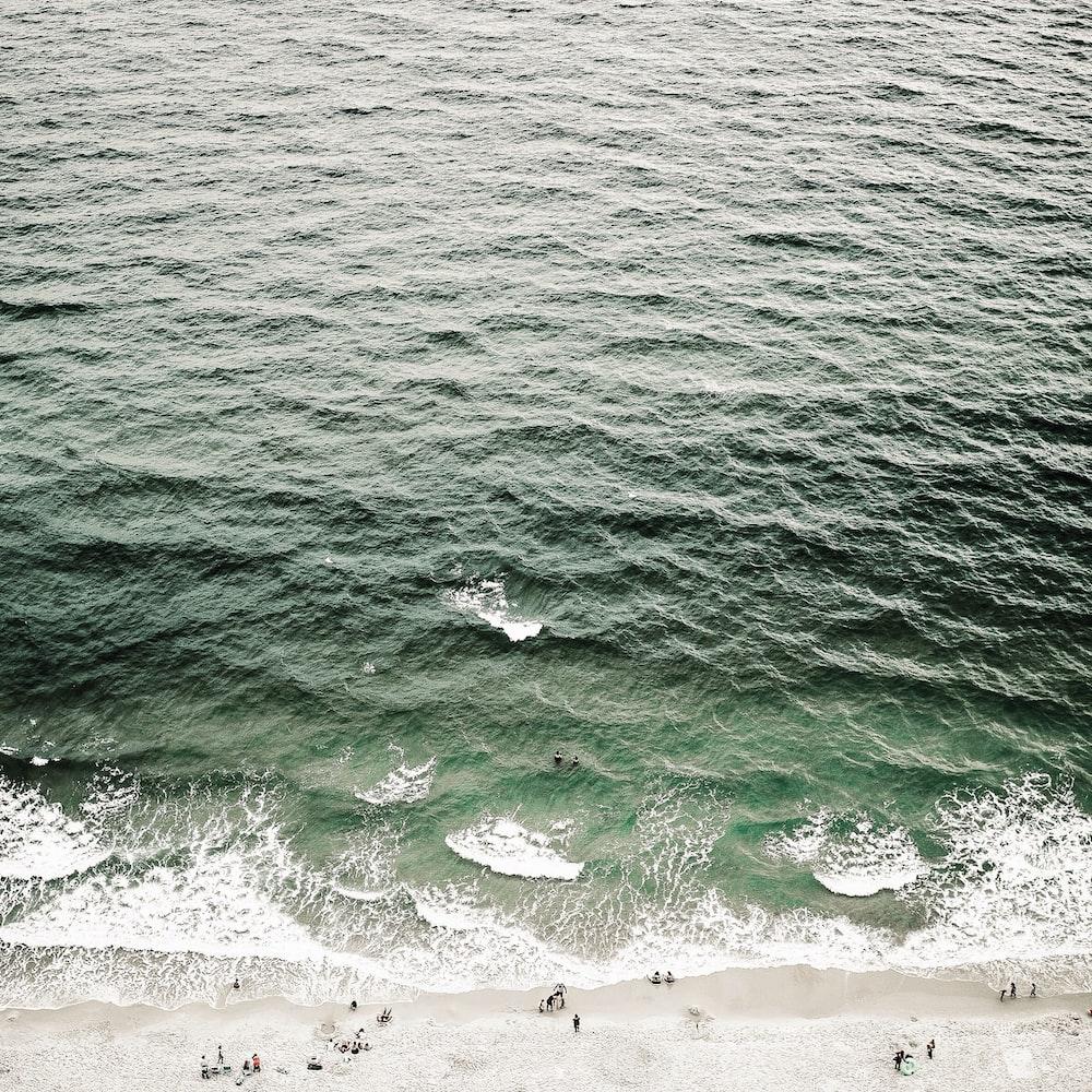 people near on water wave