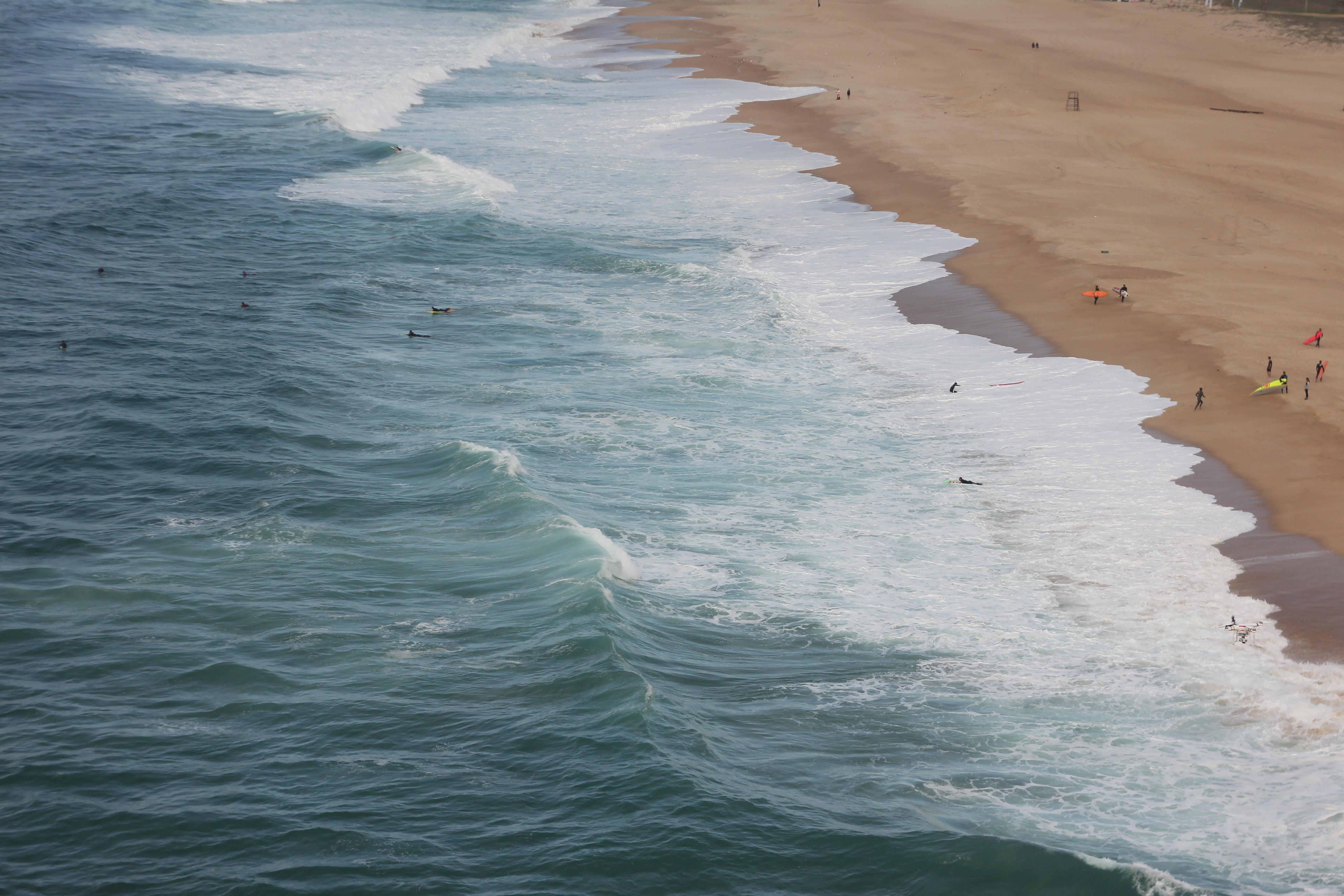 photo of people on shoreline