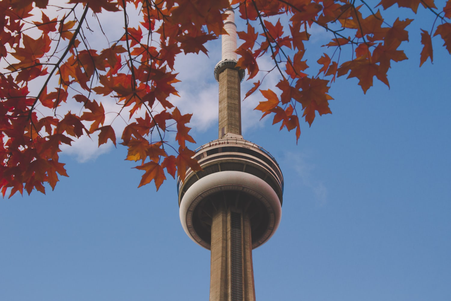 CN Tower, Canada | Nadine Shaabana on Unsplash