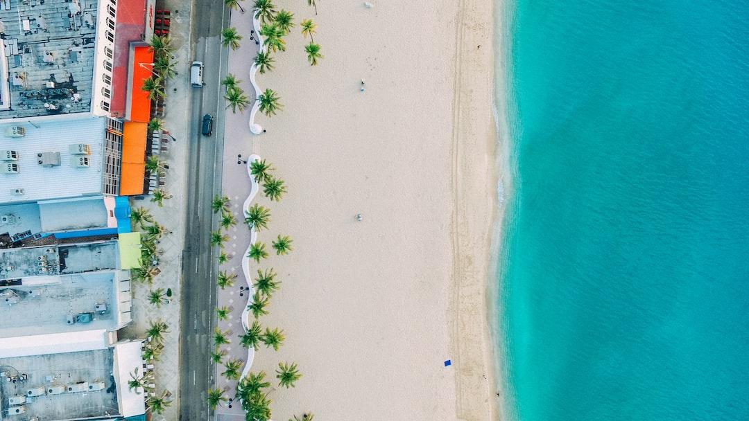 Palm-fringed beach