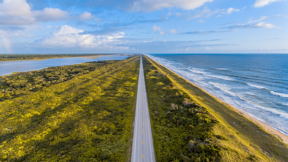 aerial view photography of asphalt road in between ocean and trees under cloudy sky