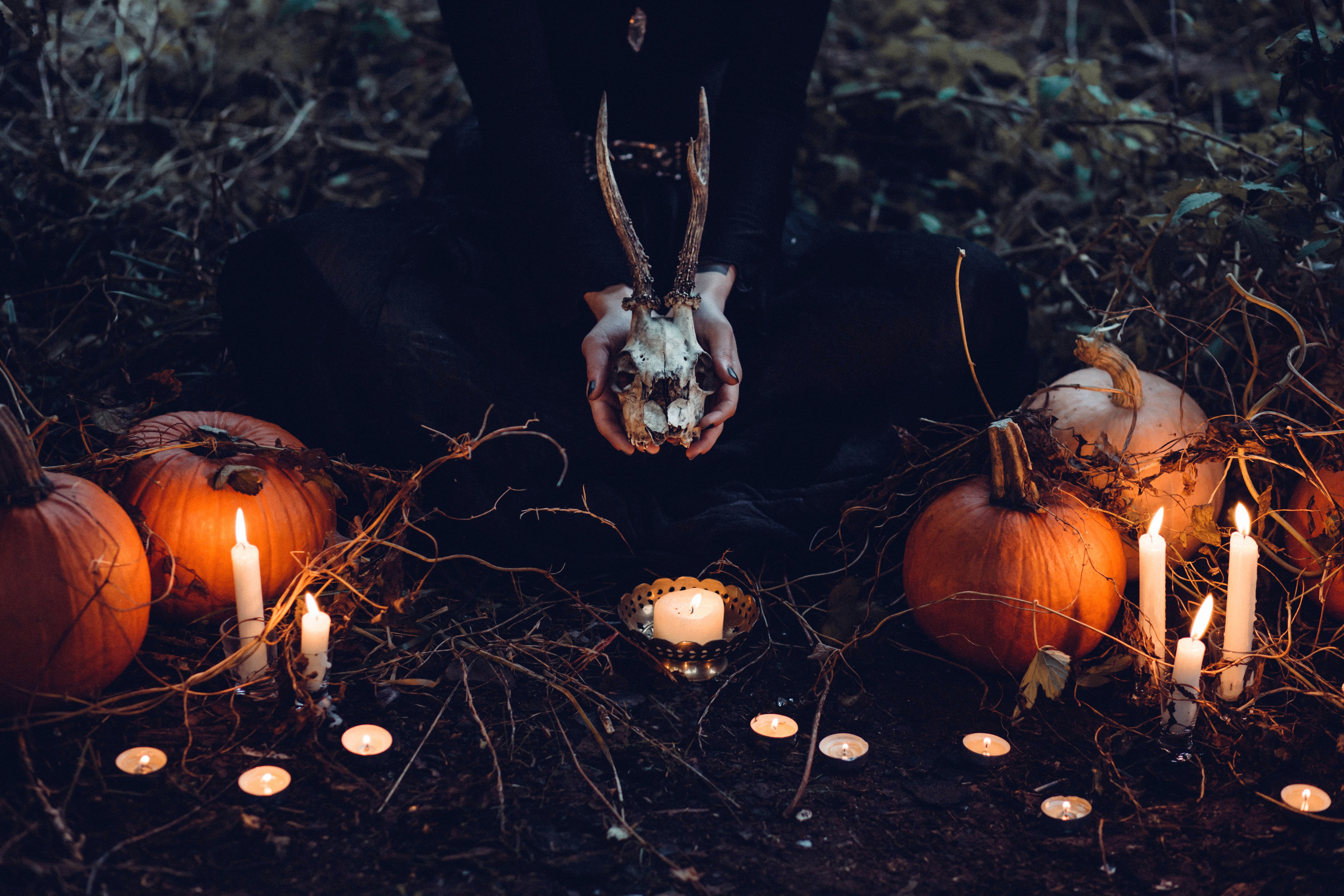 person holding cattle skull surrounded by squash and candles