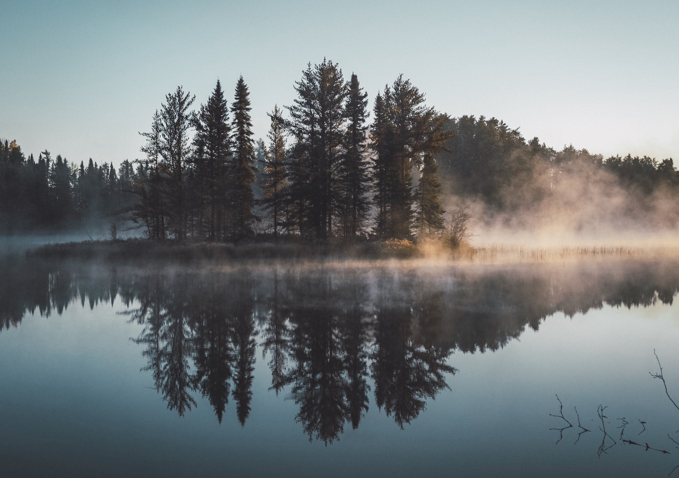 The reflection of Evergreen trees in the lake on a foggy day