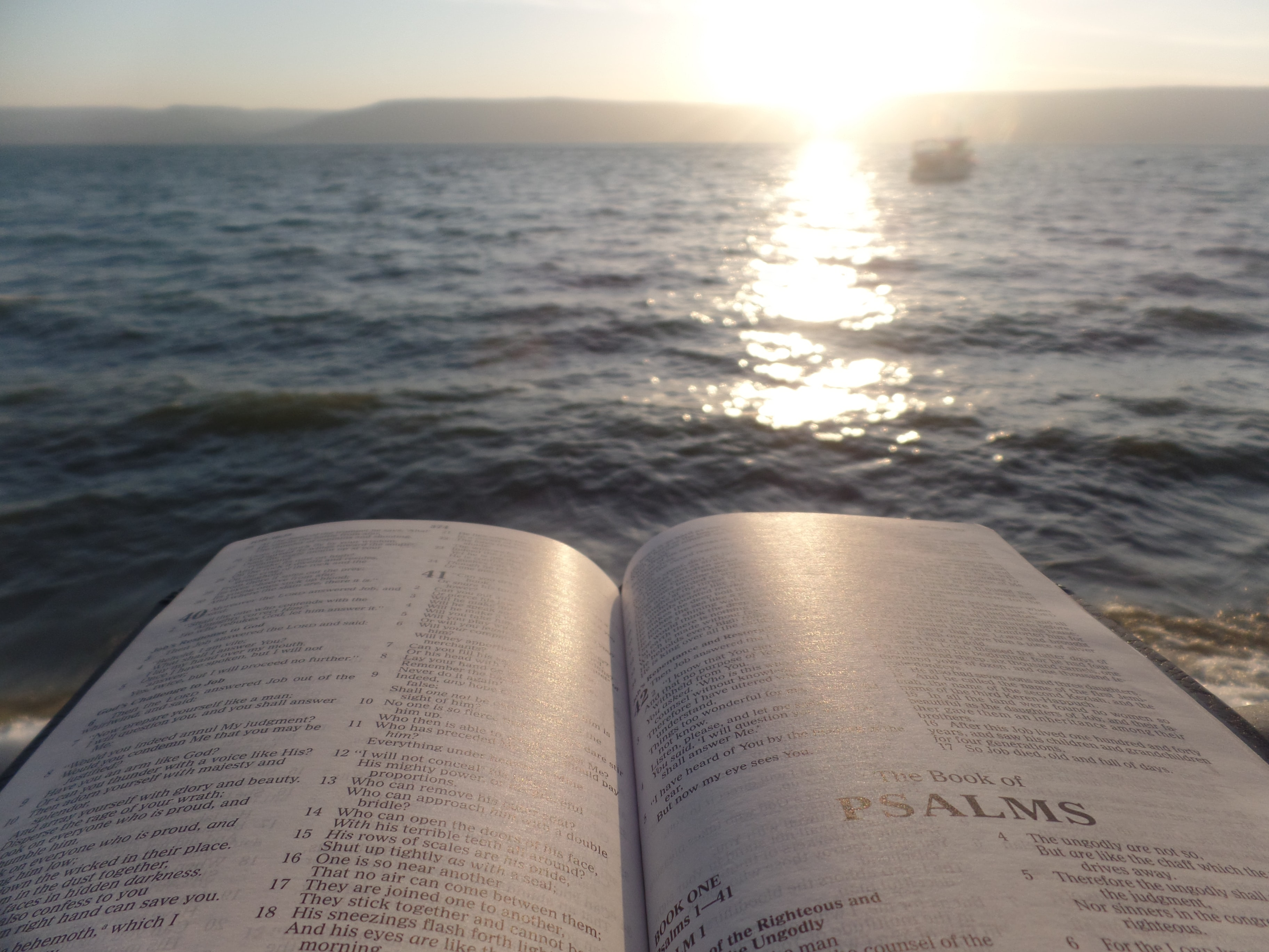 An open book with the ocean in the background.