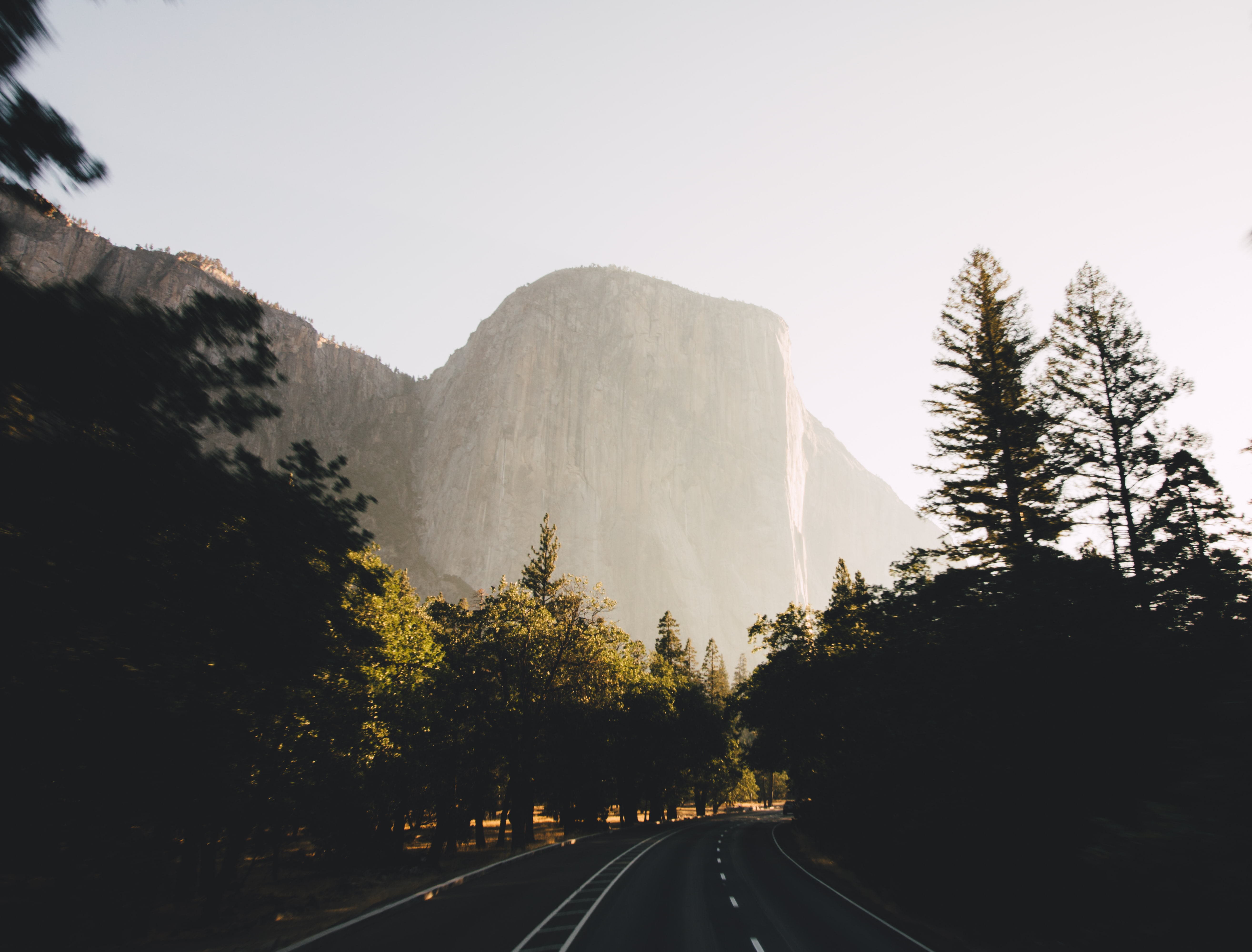 A curve in a tree-lined road near a vertical granite summit in Yosemite Valley