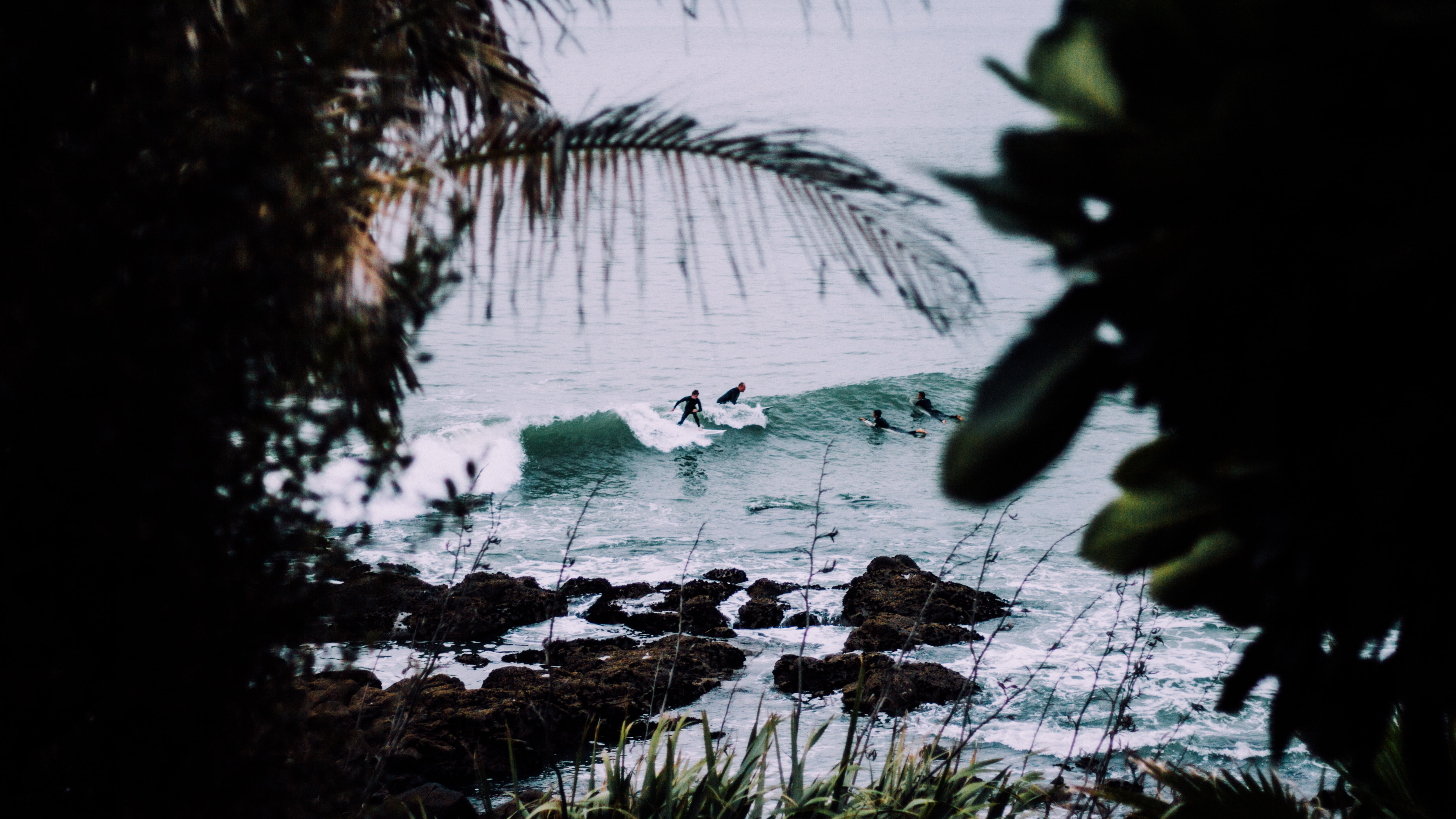 A view of surfers catching waves in the water in Whale Bay from the trees