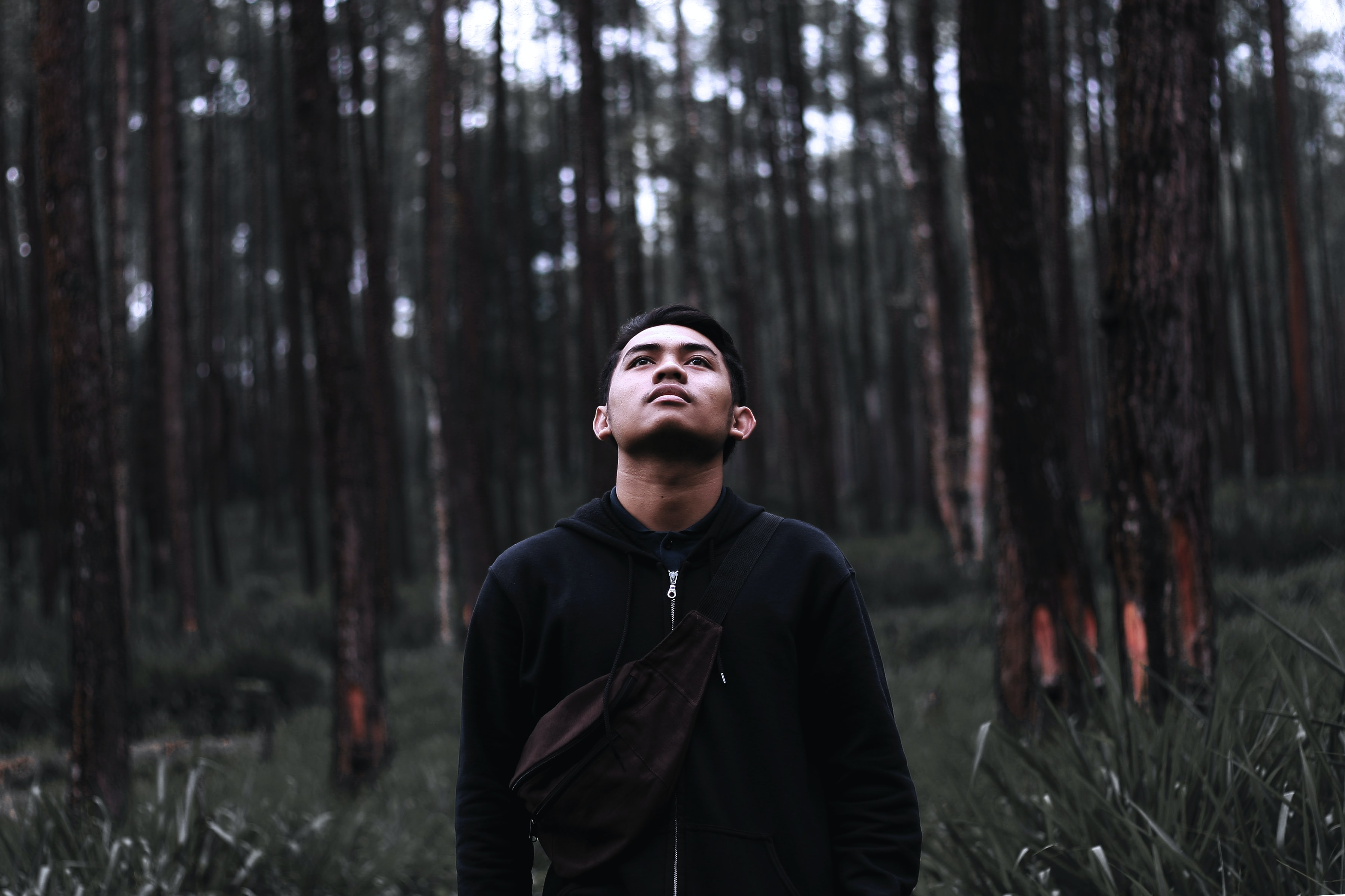 A young man standing in tall grass in a forest and looking up