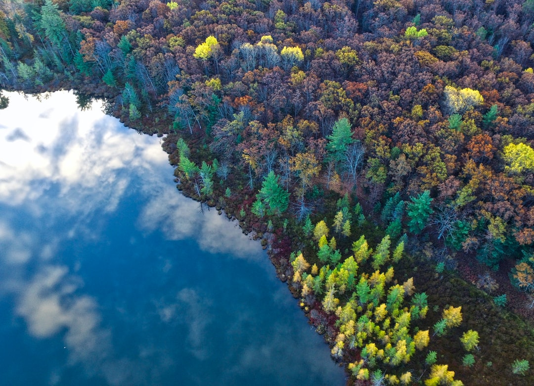 A drone view of Lake Michigan and the forest in the fall in Prudenville, Michigan, United States