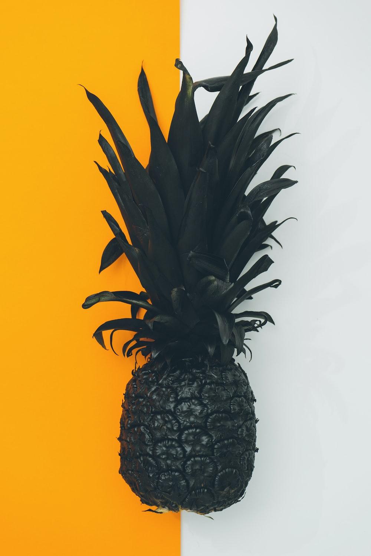 black pineapple fruit