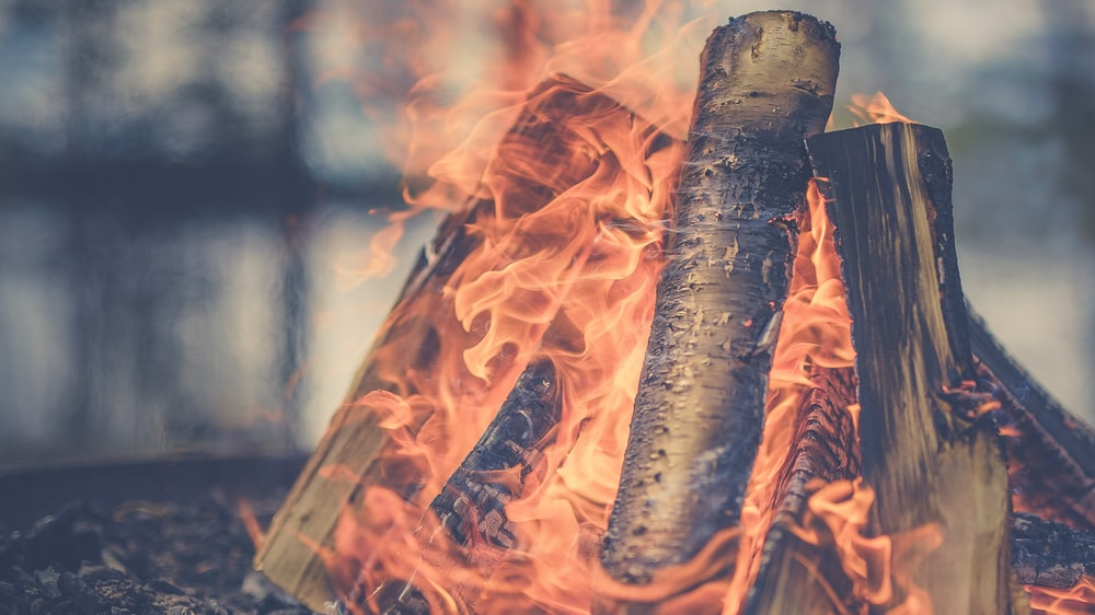 focus photography of firewood burning at daytime