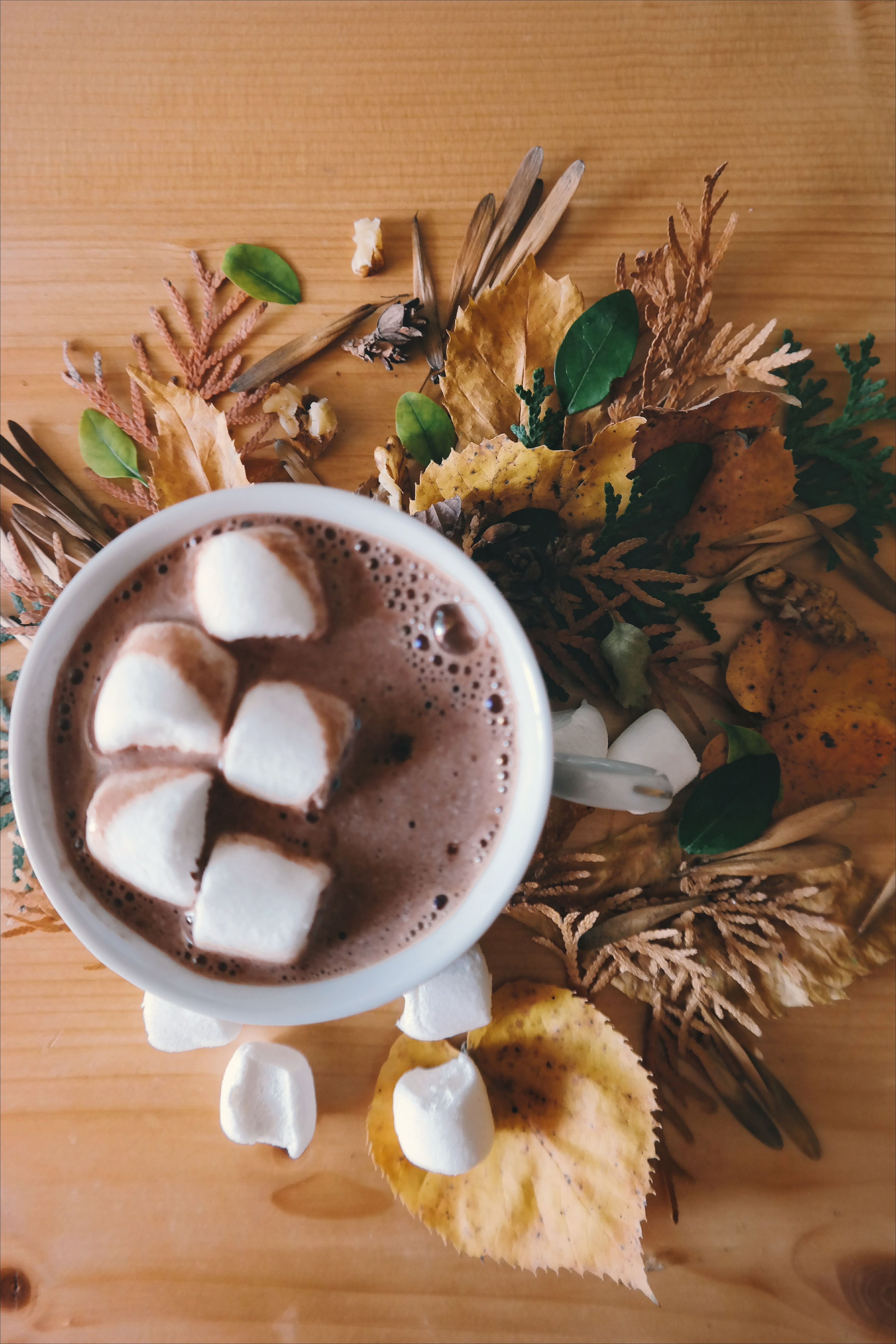 Marshmallows in a cup of hot chocolate, sitting on top of flowers.