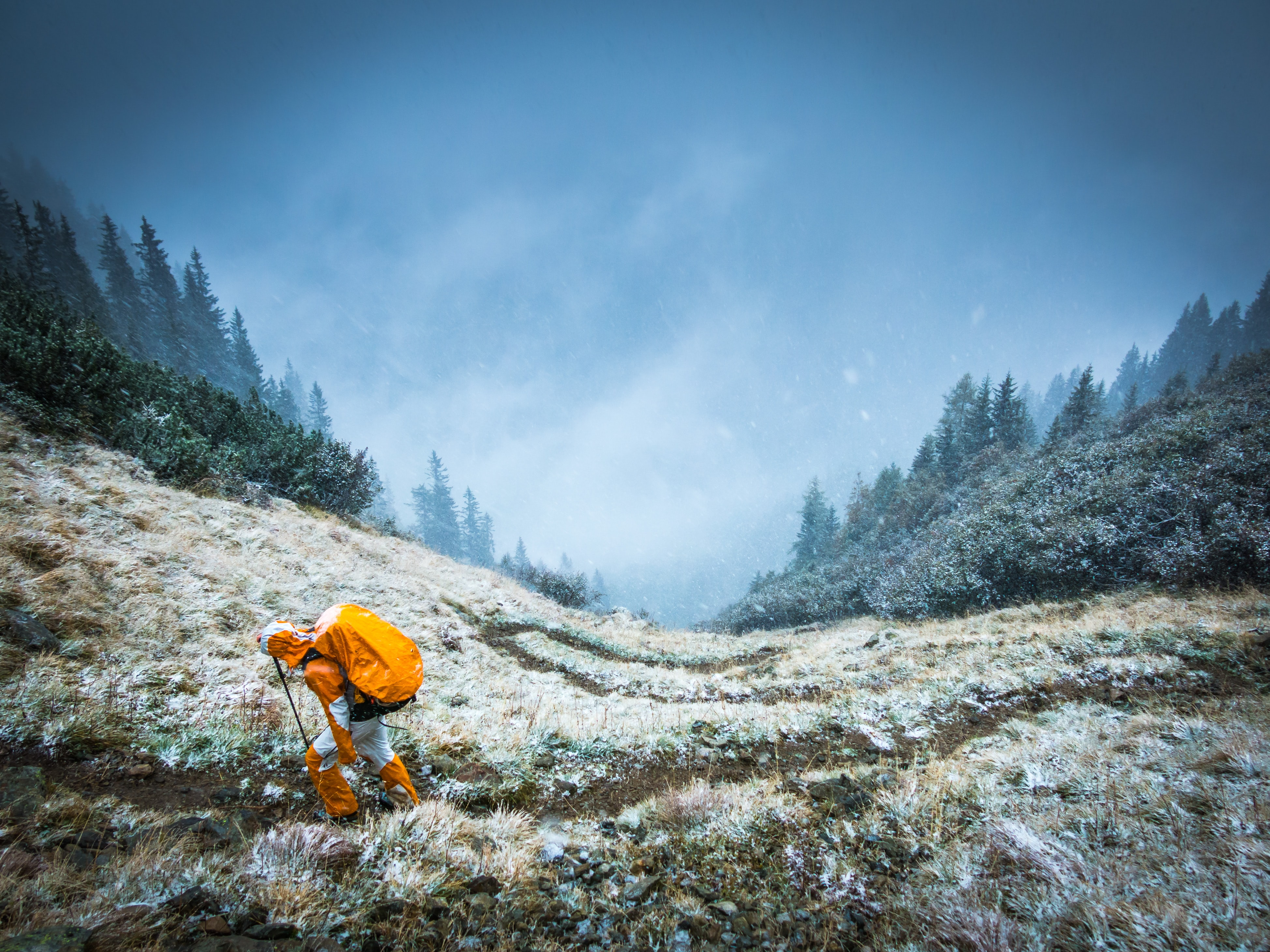 A mountaineer in bright orange clothes on a grassy slope in winter