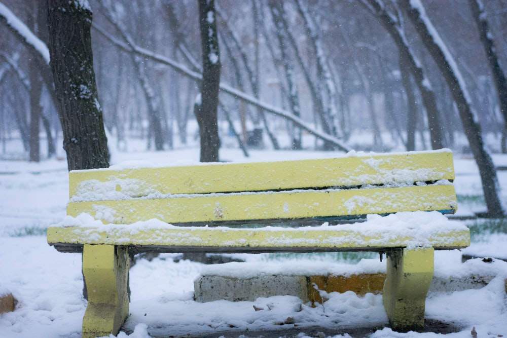 snow covered yellow bench near trees