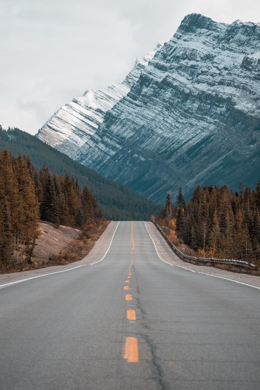 gray concrete road between trees near mountain