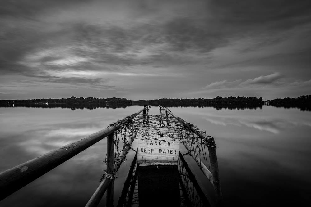 grayscale photography of dock far from trees