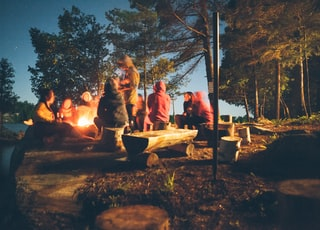 group of people near bonfire near trees during nighttime
