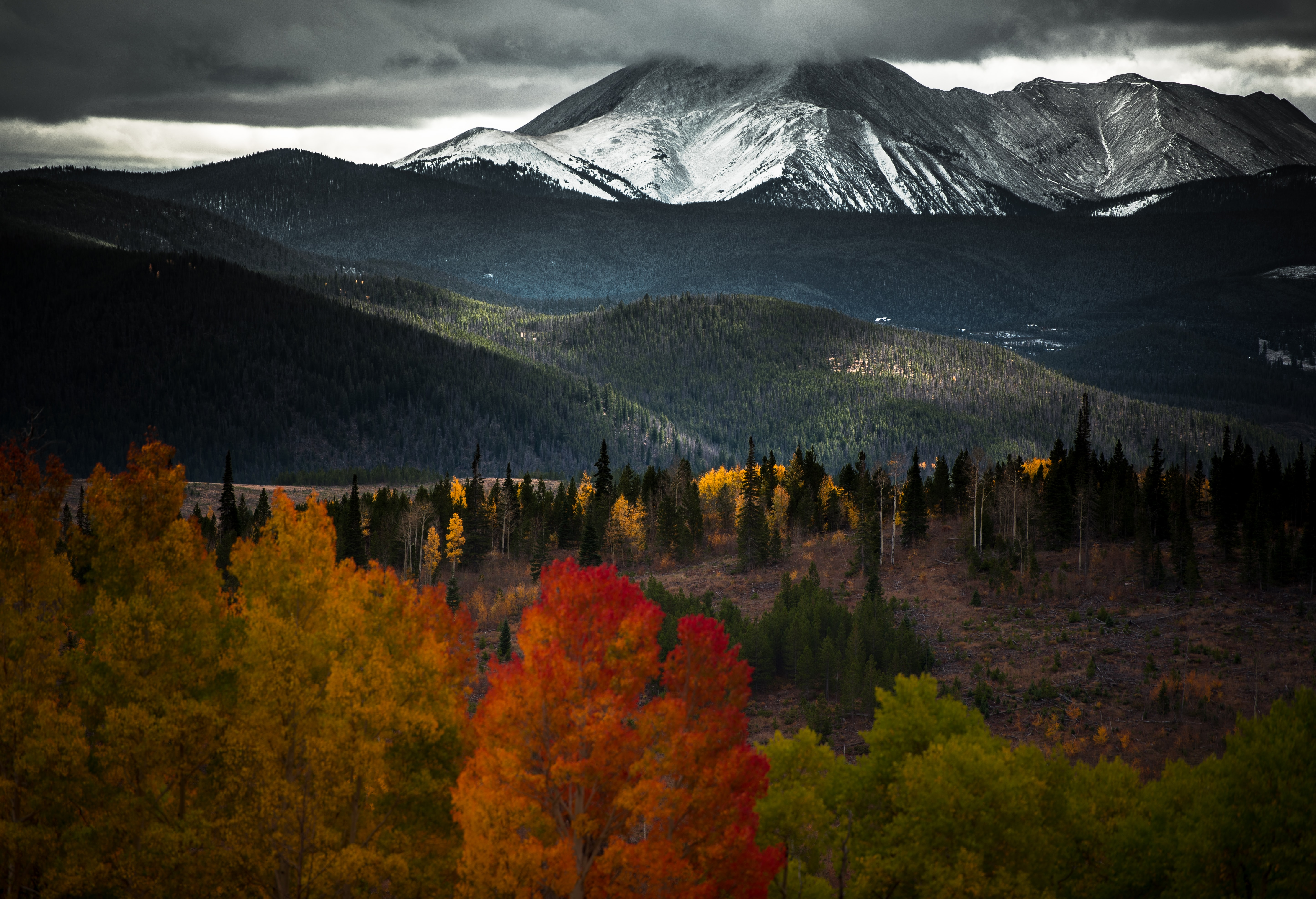 Colorful autumn trees and undulating hills near snow-capped mountains in Silverthorne