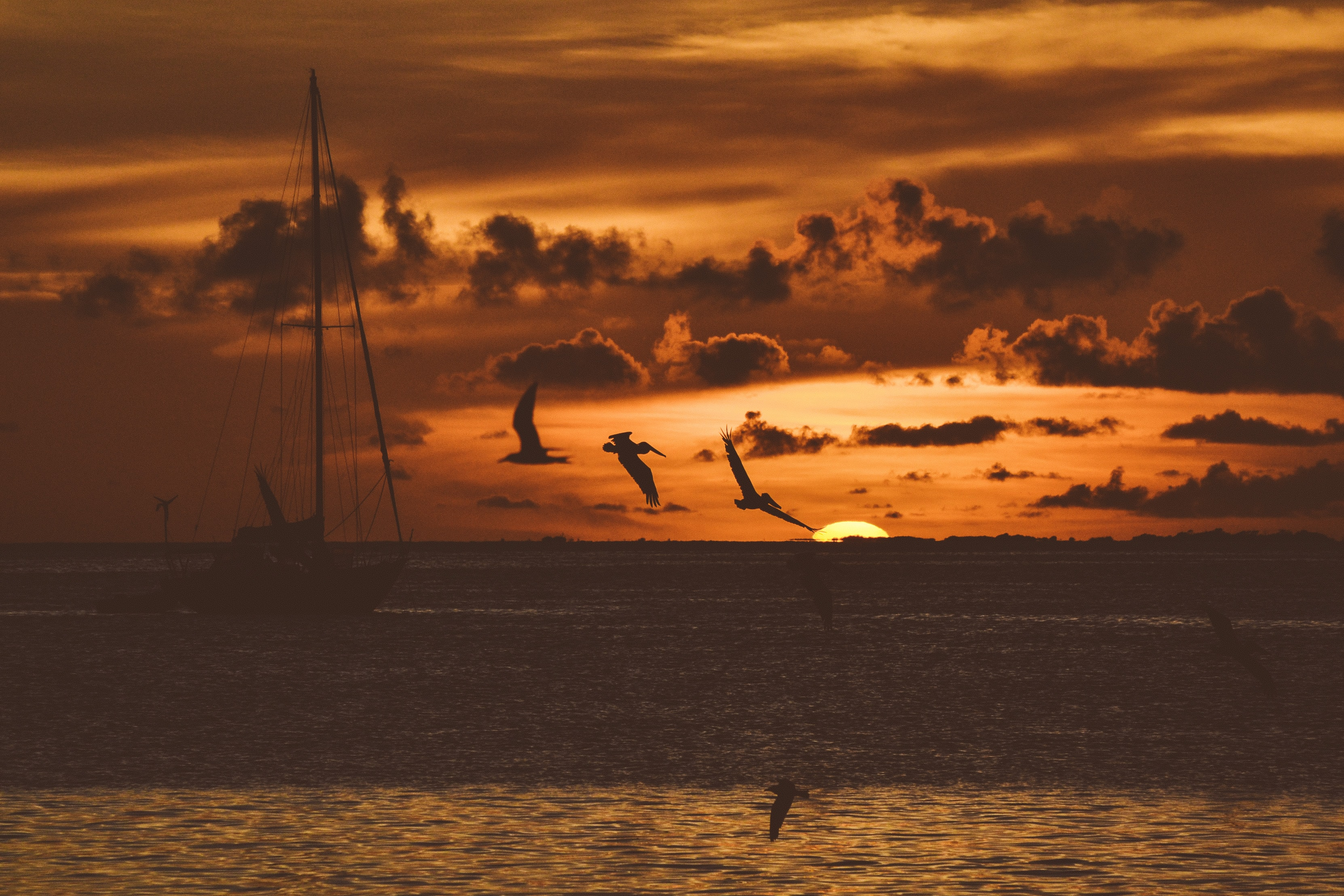 Silhouette seagull flying over water and a single silhouette boat floating in the showdown waters during sunrise-or-sunset and the sky is orange