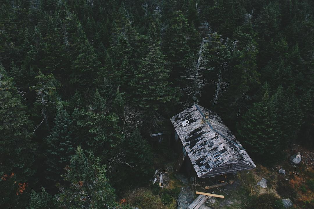 Аэросъемка кабины в лесу