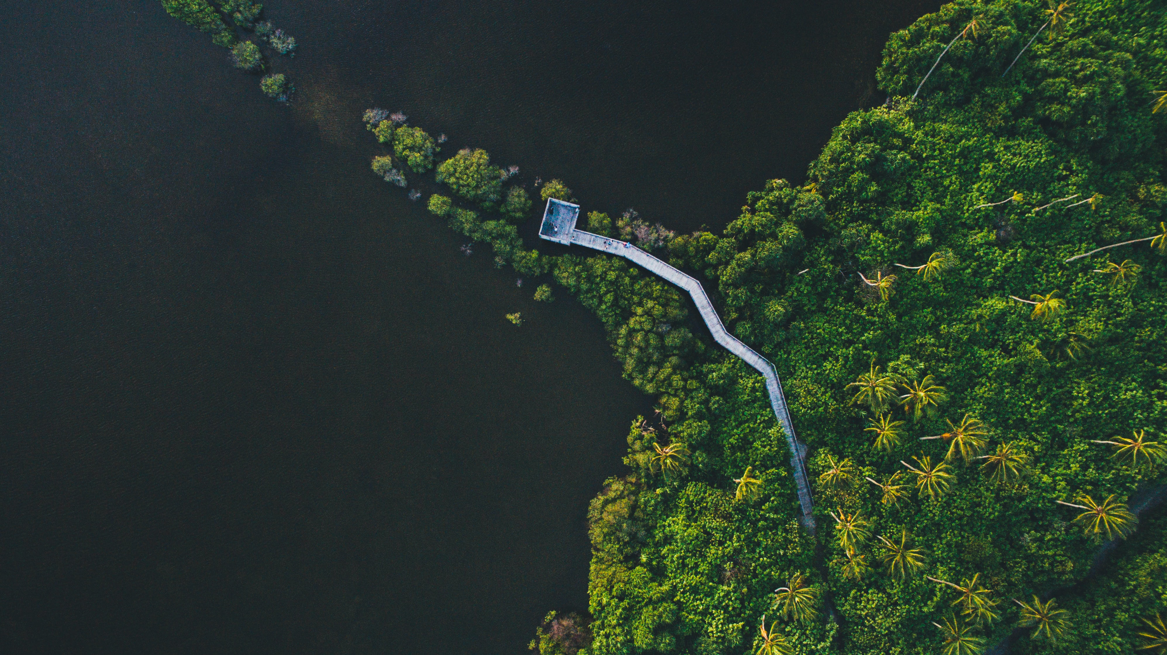 A drone shot of an observation point in a tropical forest near the ocean