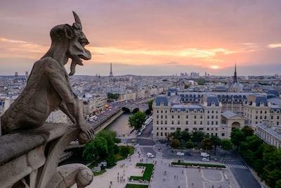 Notre Dame gargoyle sunrise.