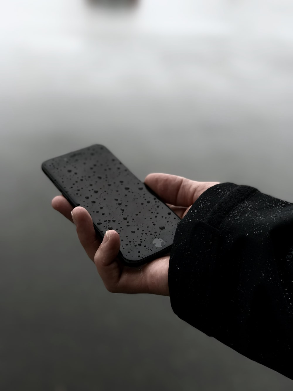 person holding iPhone
