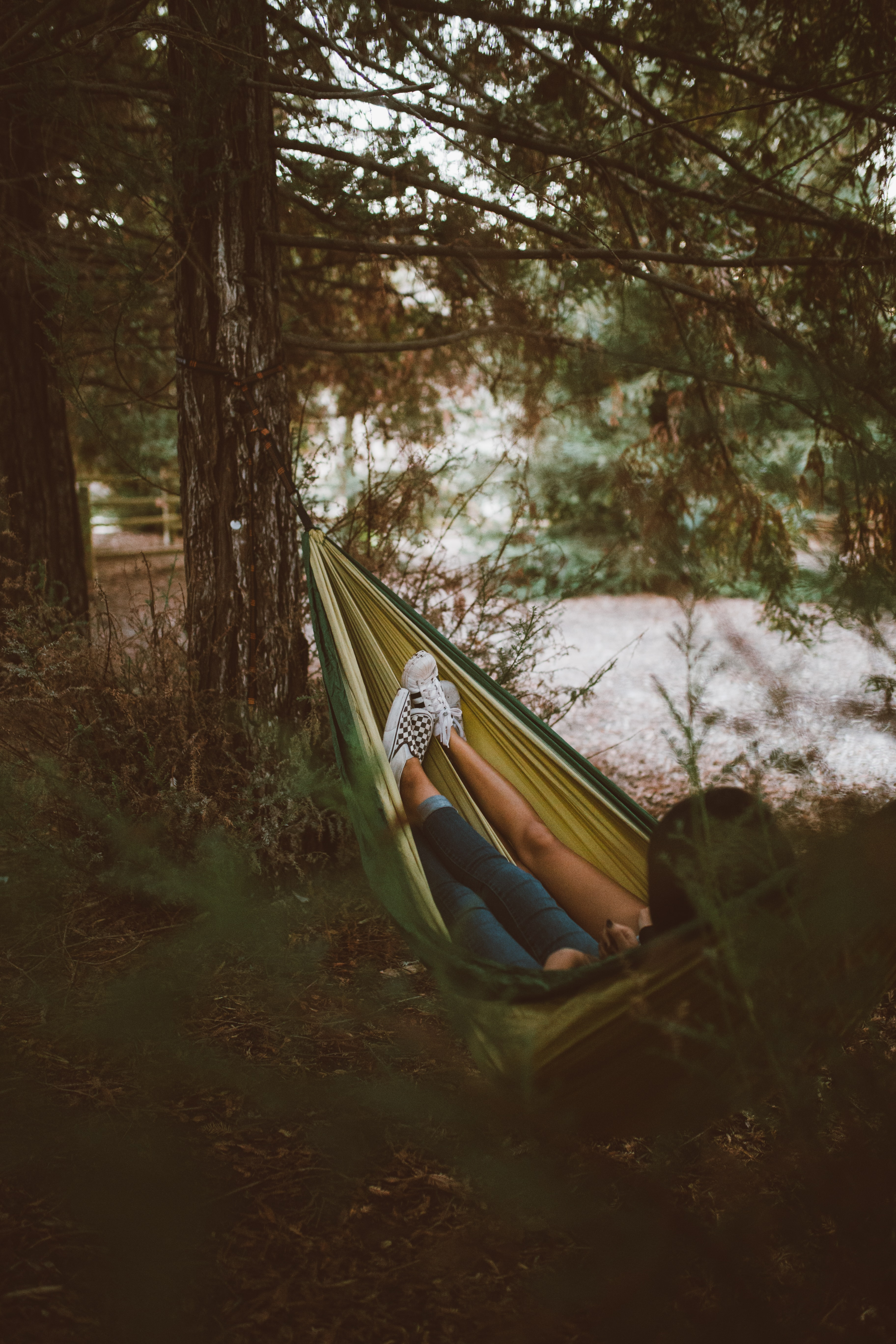 Two people in a hammock hanging between trees