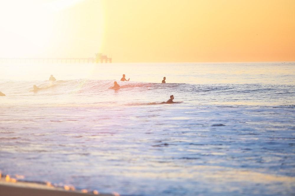people surfing on beach