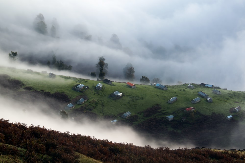 houses surrounded by fog