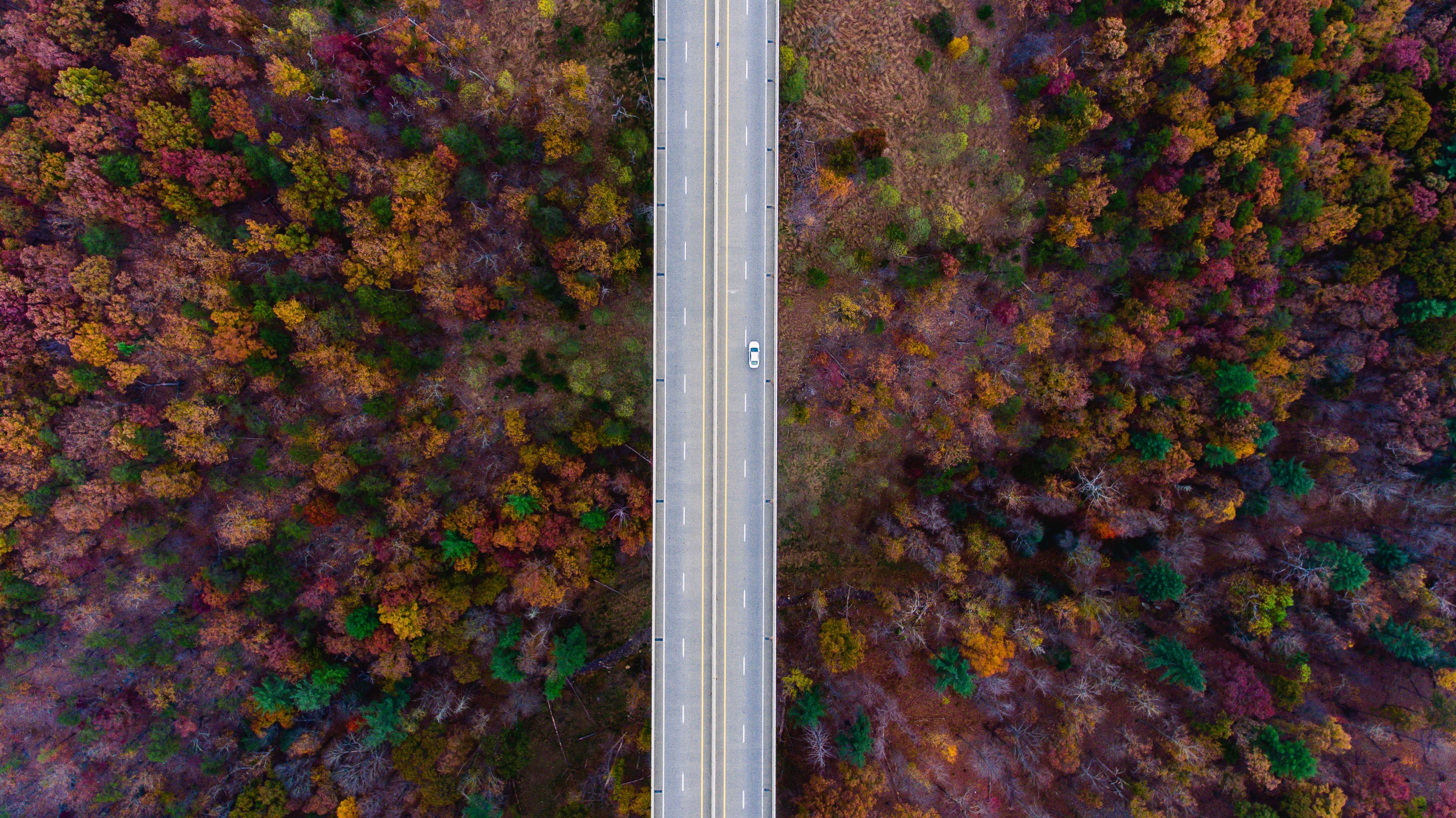 Lone car driving on a countryside road in autumn