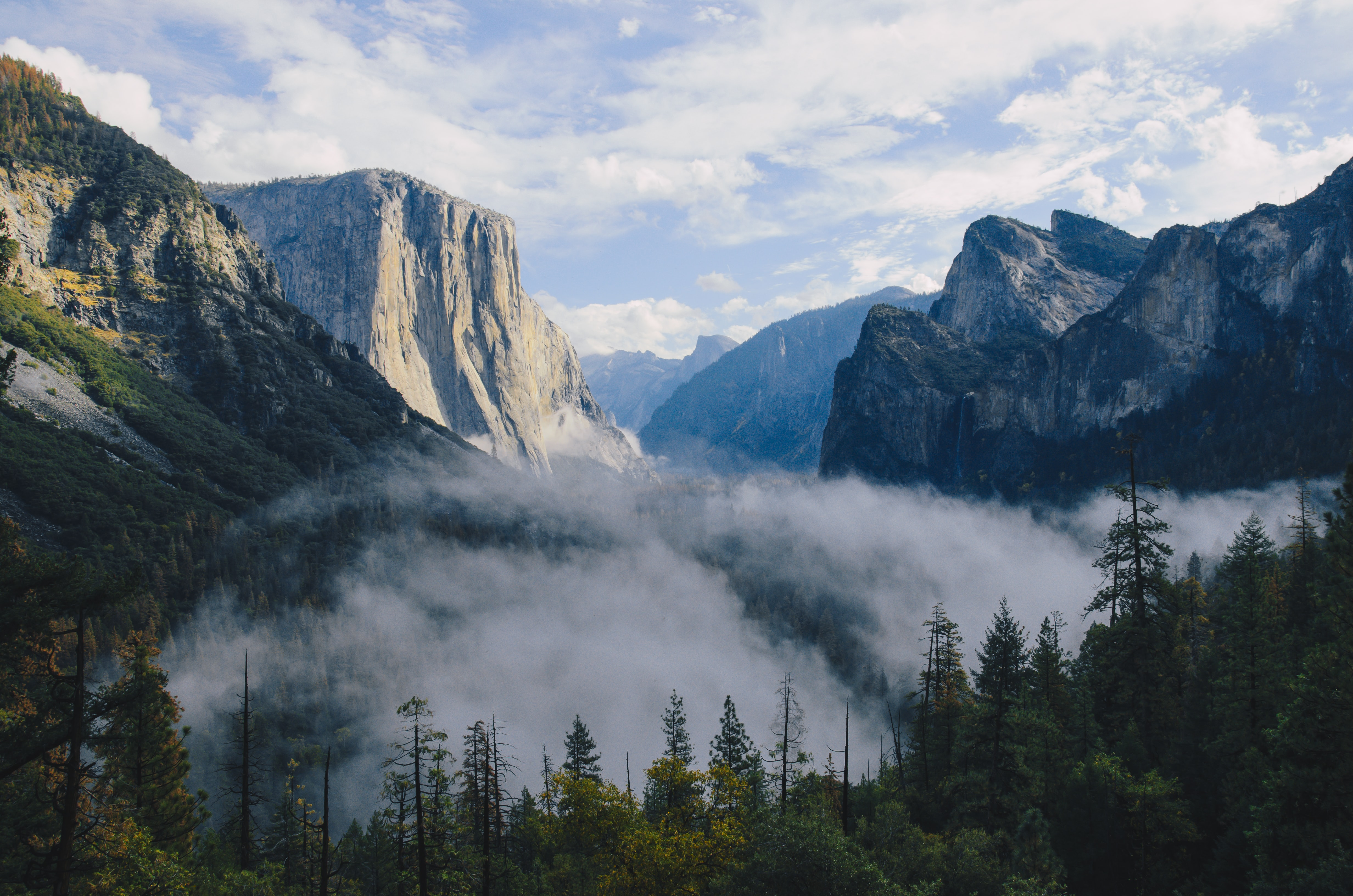 Mist over the bottom of Yosemite Valley with view on El Capitan