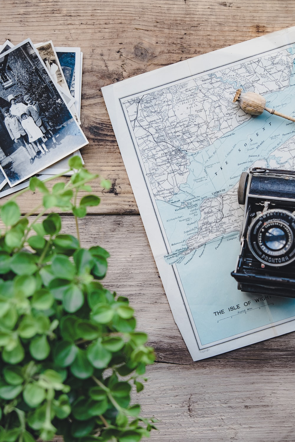 black and silver TLR camera on Isle Of Wight map