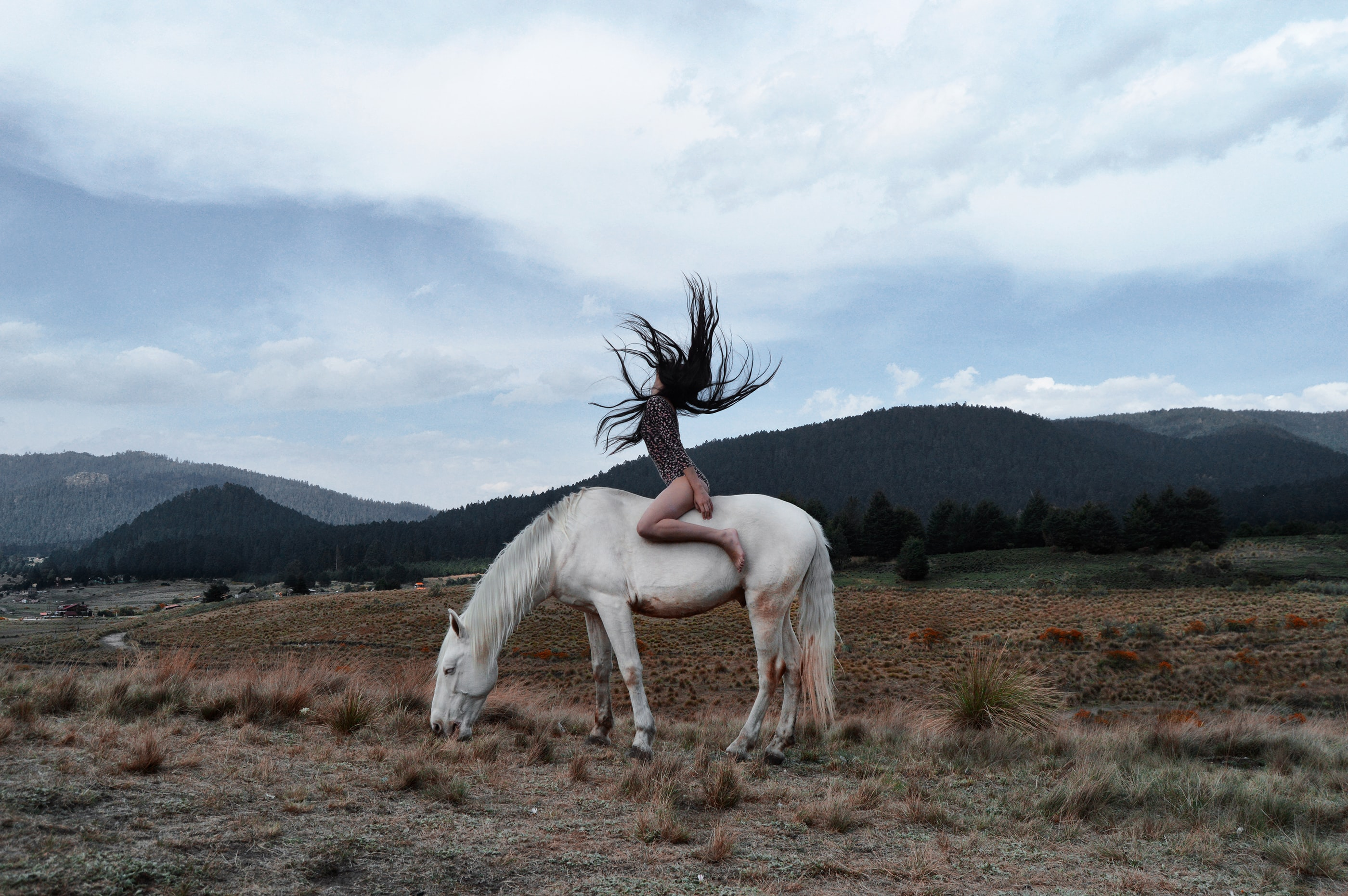 A dark-haired woman throwing her head back on a white horse her head back
