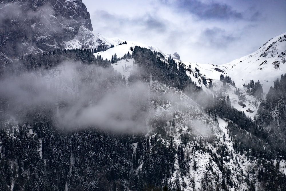 mountains with white snow and fog during daytime