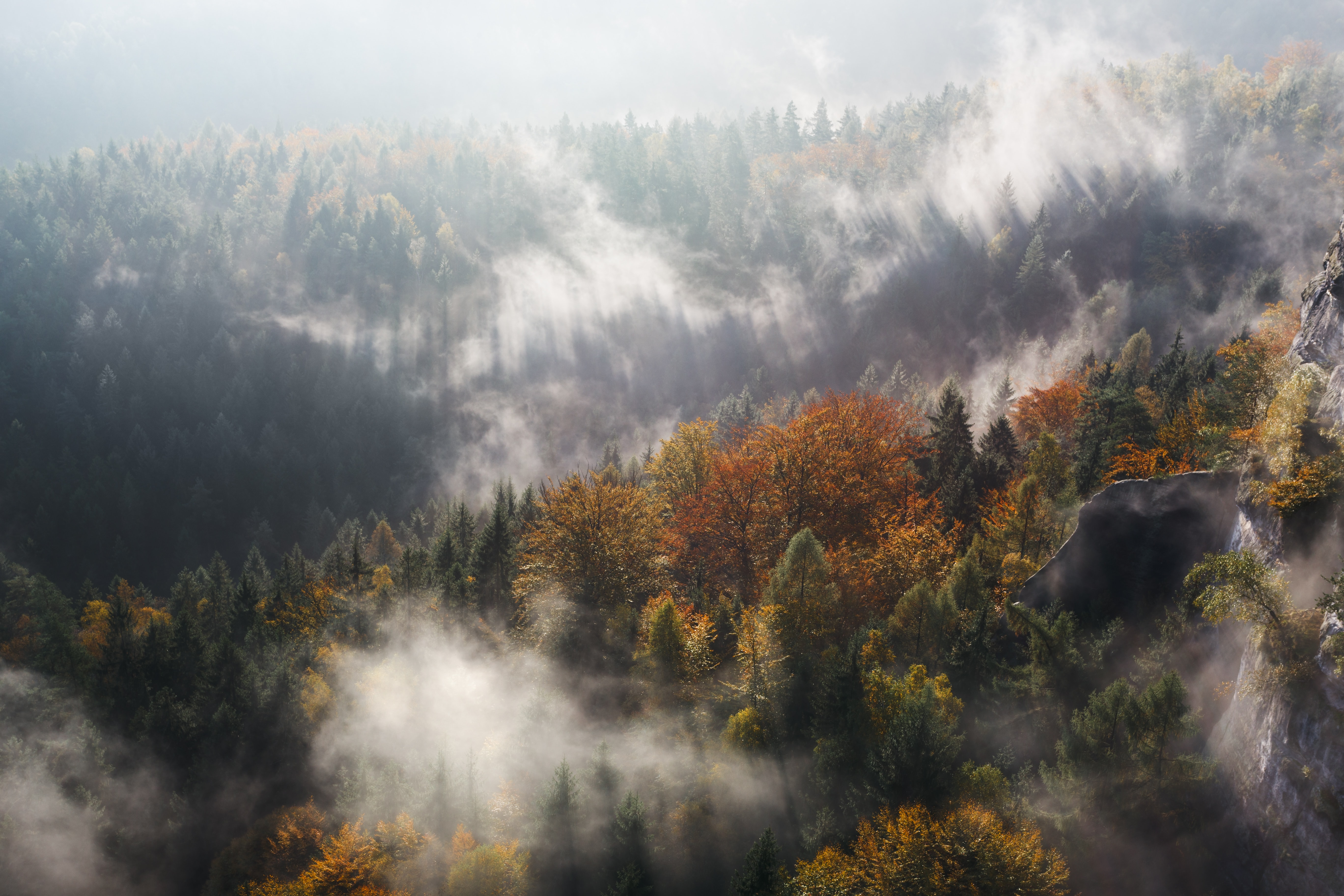 Clouds of fog over colorful autumn trees near a rock formation