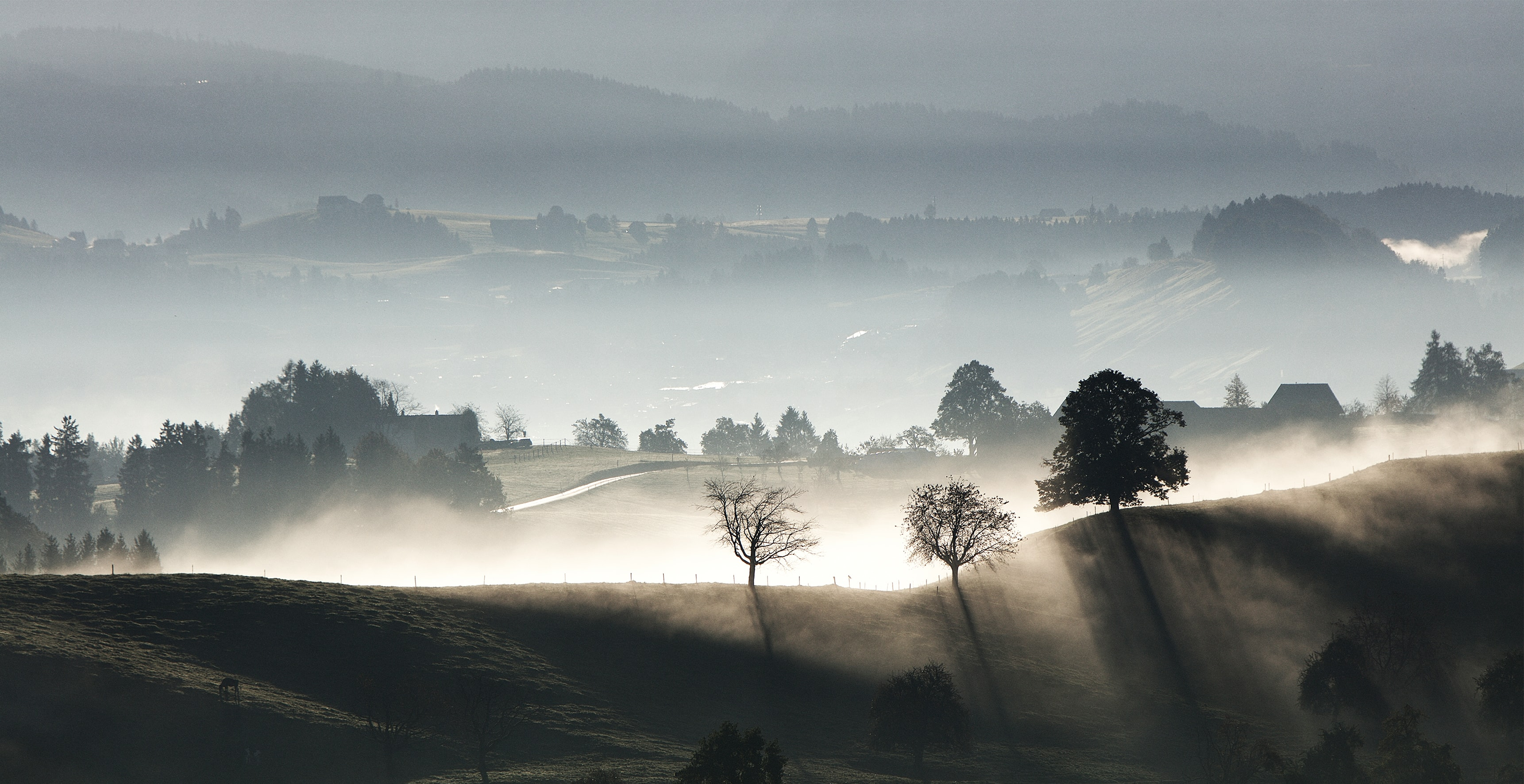 Sun peaks through mist in foggy farmland in Hirzel
